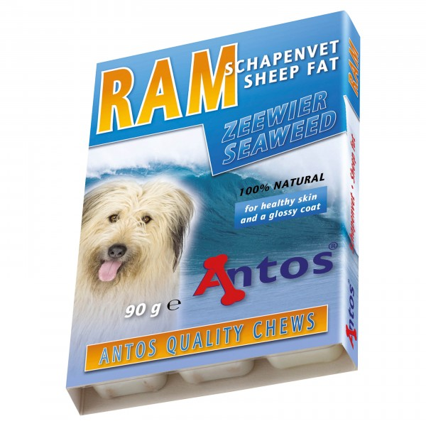RAM Sheep Fat