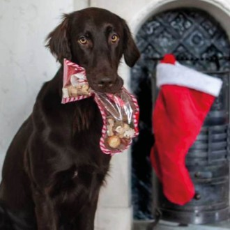 Christmas Snack Stocking